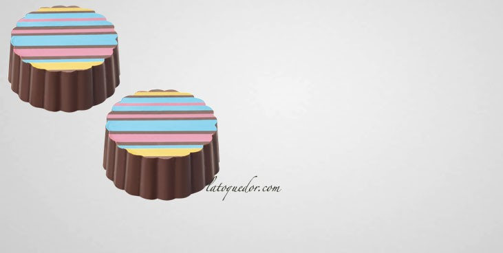 Moule à chocolat magnétique 15 pralines