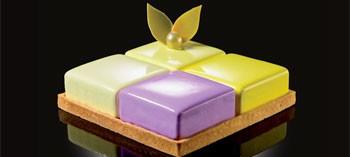 Kit 9 cadres carrés inox avec insert Cake Idea - Martellato