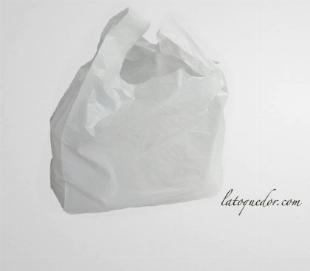Sacs bretelles blanc 26x45 cm (x500)