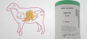 Boyaux menu de mouton