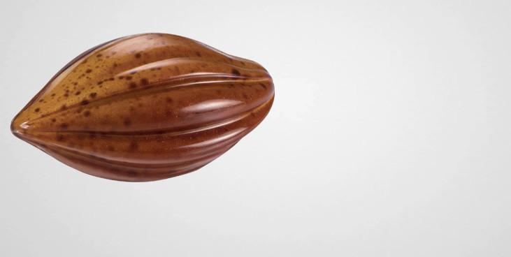 Moule à chocolat 21 cabosses cacao - Martellato