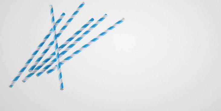 Pailles papier carton biodégradables (x50)